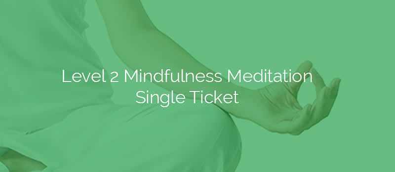Level 2 Mindfulness Meditation Single Ticket